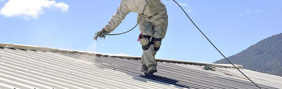 Roof Service RSW.jpg