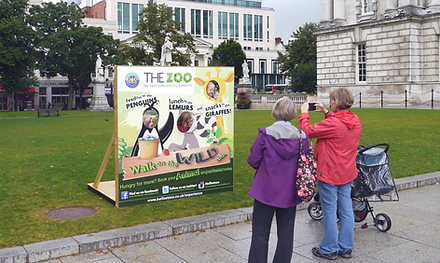 photoboard belfast city hall