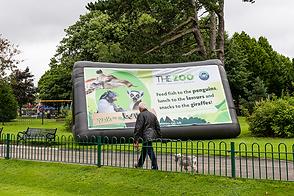 Inflatable billboard falls park belfast