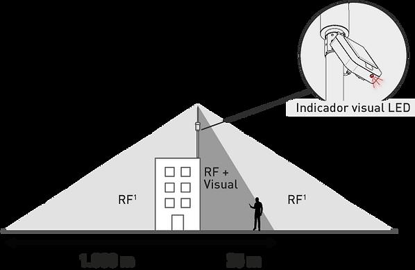 Rang RF.png