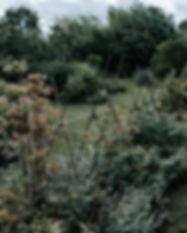 farm (47 van 67).JPG