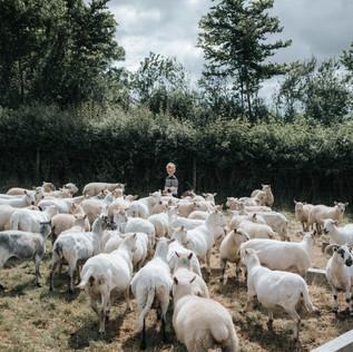 farm (38 van 67).JPG
