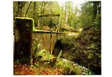 Bridge to Ethereal