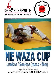 NE WAZA CUP 2019 - Affiche.jpg