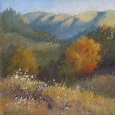 Marin Hills Morning 8x8.jpg