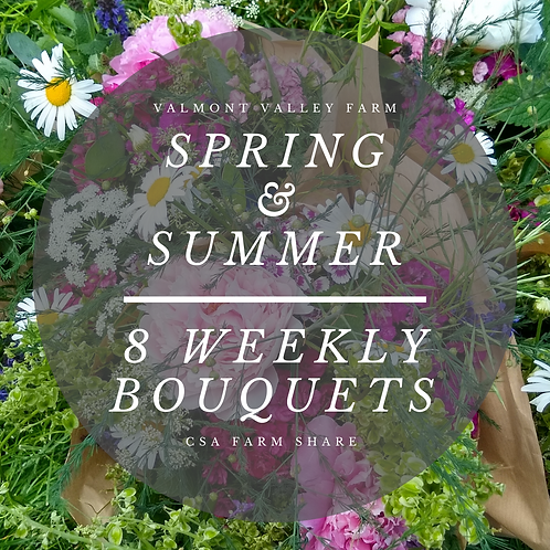 Spring & Summer 8 Weekly Bouquets