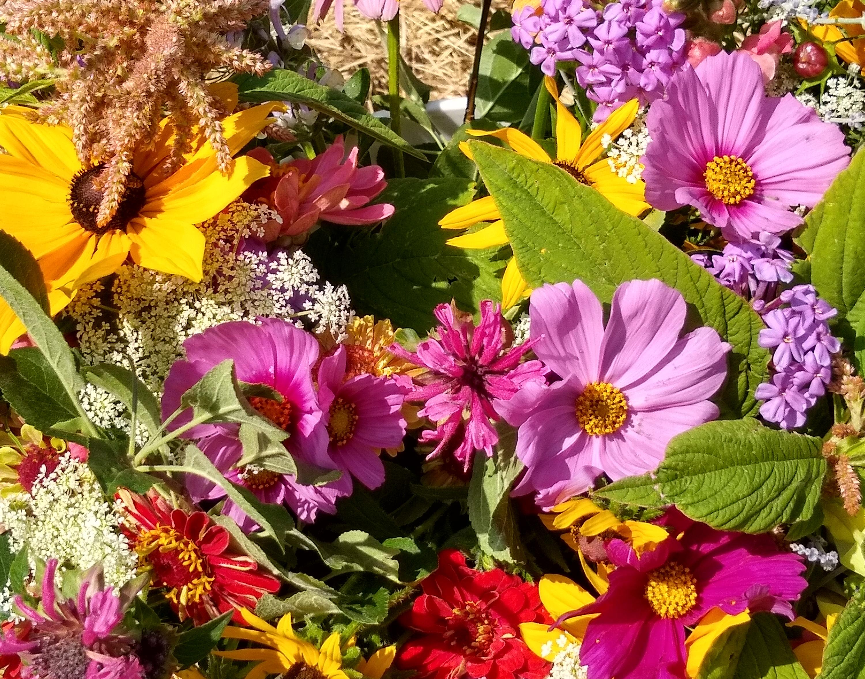 Fall CSA Bouquet