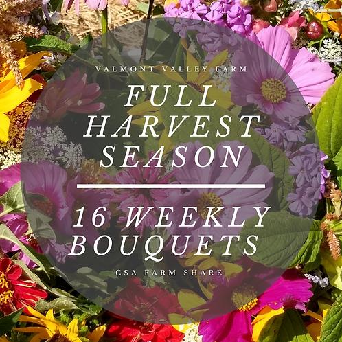 Full Harvest Season Weekly Bouquets