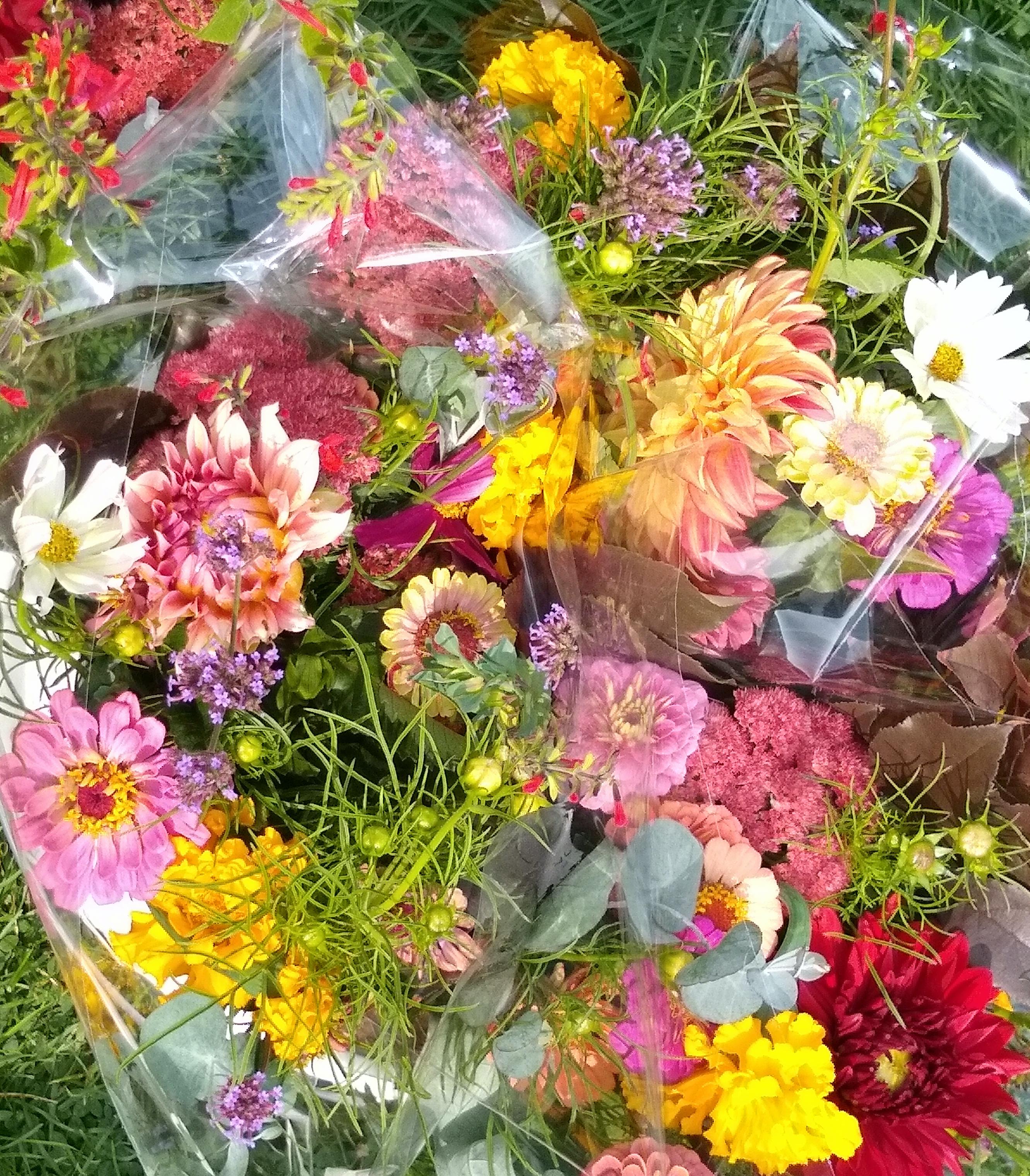 Summer CSA Bouquet