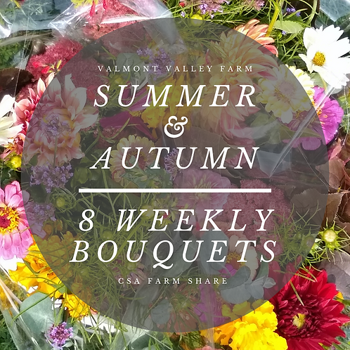 Summer & Autumn 8 Weekly Bouquets