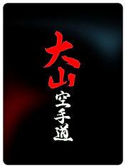 www.karatekatowice.com - Oyama Karate dla dzieci, młodzieży i dorosłych