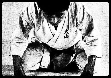 www.karategoliat.pl - Oyama Karate w Centrum Katowic