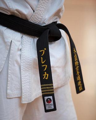 """Śląski Klub Karate """"GOLIAT"""" Katowice - twoja sekcja w centrum Katowice"""