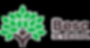 Besa Logo.png
