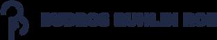 Budros Logo transparent.png