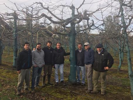 Nuevos proyectos de cerezos en el Sur de Chile: C.Abud & Cía. realizó gira técnica en la X regió