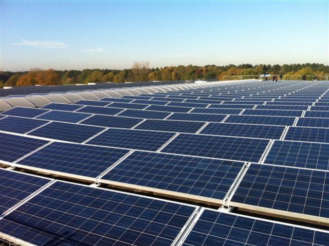 C. Abud & Cía will produce 200 ha of fruit trees with solar energy