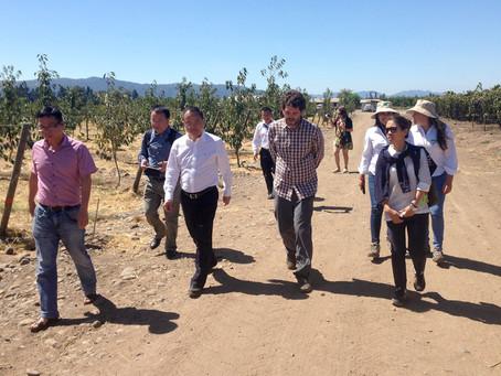 Visita de autoridades de la ciudad de Pujiang (China) a Frutícola Montegiallo