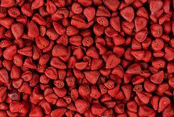 Annatto seeds, achiote seeds, bixa orell