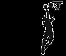 LB nav_ico_Basketball_.png