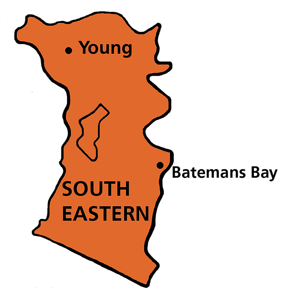 NSW SOUTH EASTERN.png