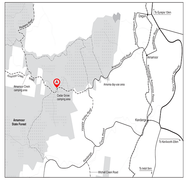 amamoor state forest.png