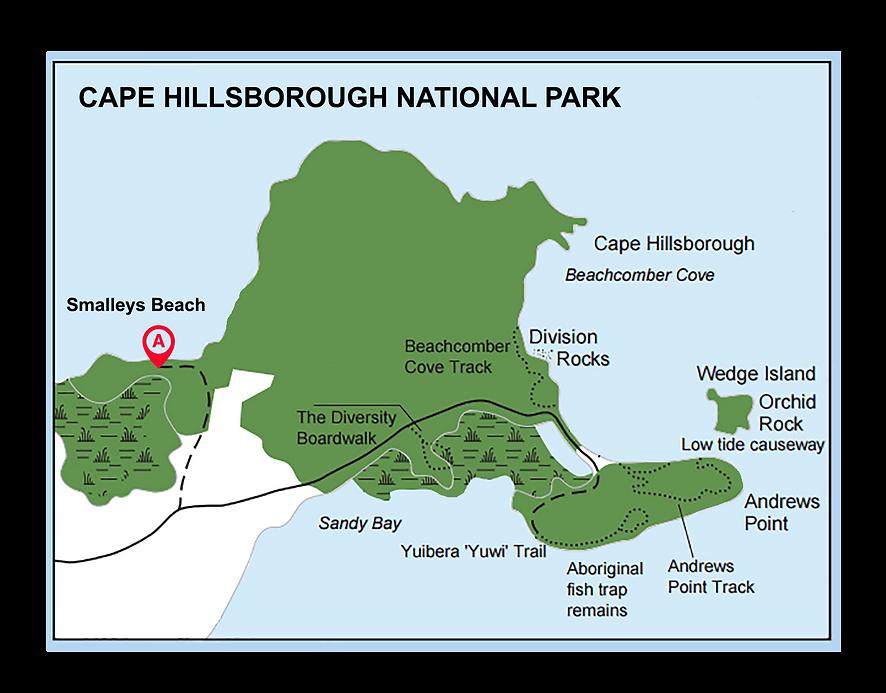 cape hillsborough np.png