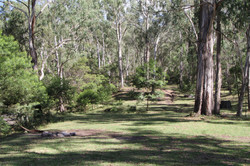 Camping area at Gordon Country