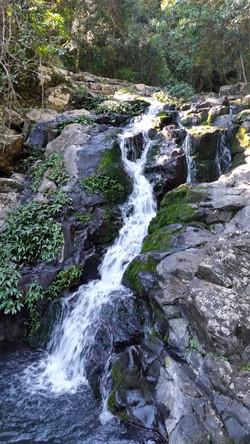 Waterfall - Main Range National Park