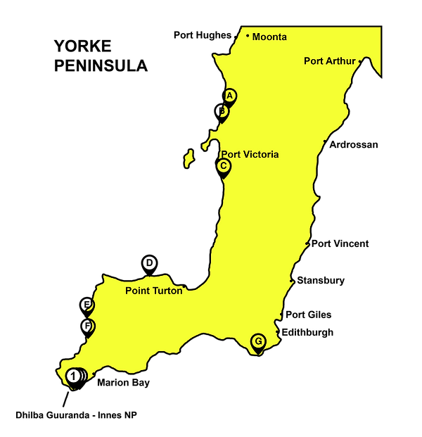 Yorke Peninsula with markers.png