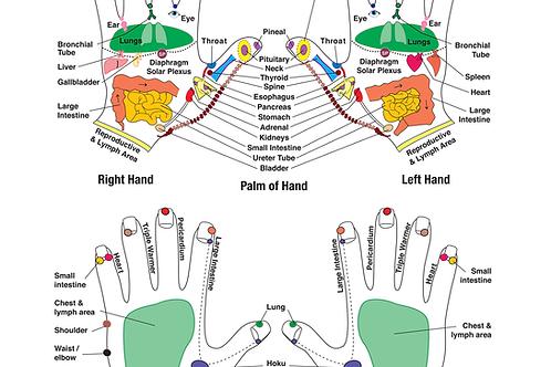 """Integrative Reflexology 8.5""""x 11"""" Hand Chart"""