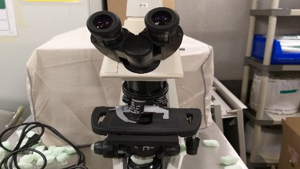 BT24 Microscope Direct