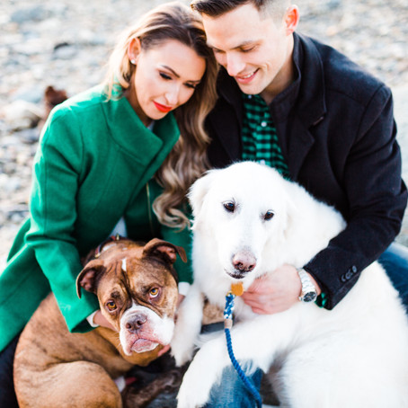 Tips for Taking Your Best Holiday Photo Featuring Amanda Fogarty Photography
