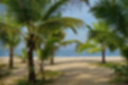 Marari Beach au Kerala