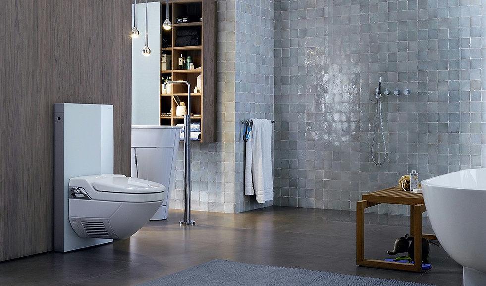 Geberit Monolith Toilet, Bathroom Products supplied by sagar ceramics