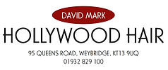 David Mark Hollywood Hair Weybridge Logo