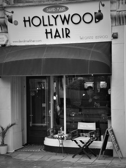David Mark Hollywood Hair