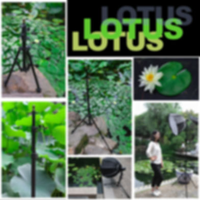 Tinkteek Lotus Outdoor-Fotografie Lichtständer tragbar vor Ort.jpg