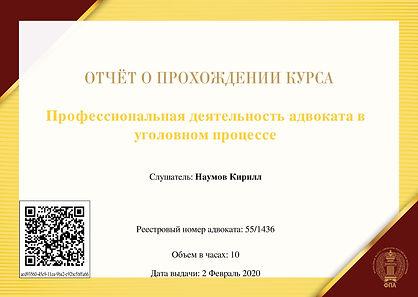 Профессиональная_деятельность_адвоката_в