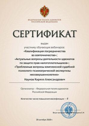 Сертификат просмотра трансляции (3).jpg