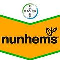 nunhems_logo_edited.jpg