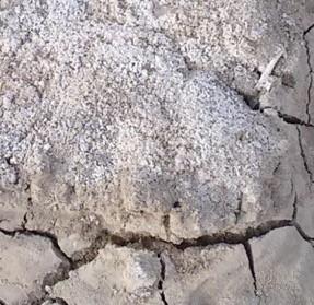 Cilindro Less Salt uso agrícola