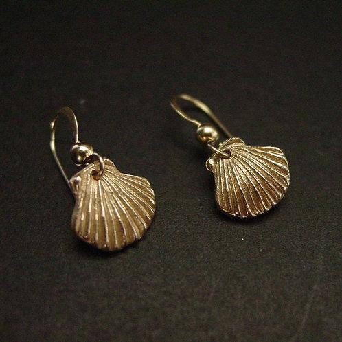 Tiny sea shell earrings