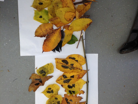 Key Stage One Autumn Crafts