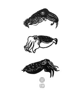 Cuttlefish Totem