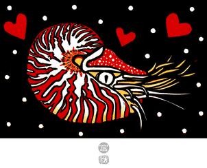 Cephalopod Love (Nautilus)