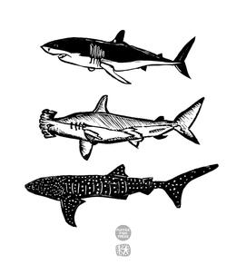Shark Totem