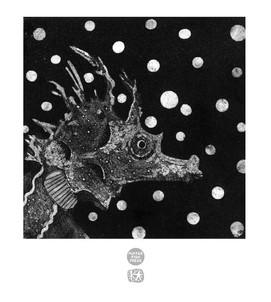 Polkadot Seahorse