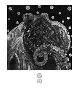 Polkadot Octopus