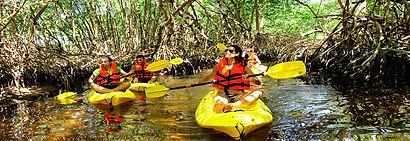 Aventura y Ecoturismo en Campeche.jpg